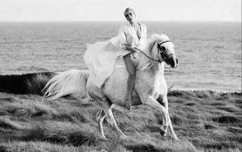 Lady Gaga lamenta la muerte de su yegua Arabella